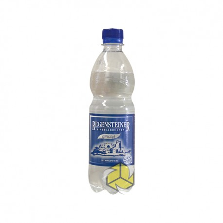 Regensteiner Mineral Wasser 0,33l